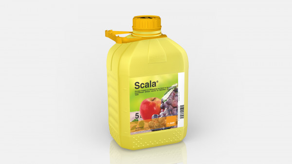 Scala (5l)